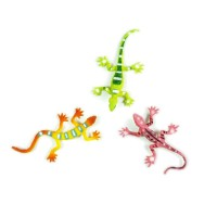 Evolution of Lizards Magnets