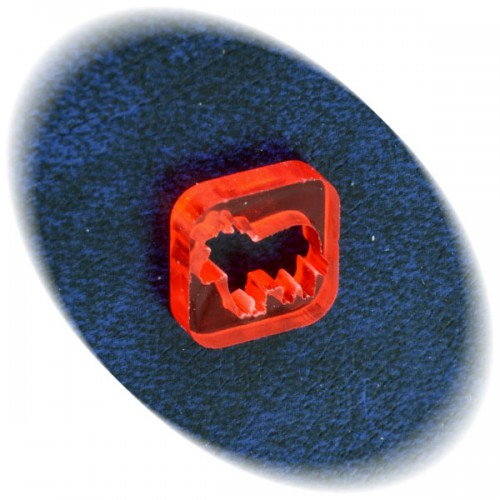 Cattle token