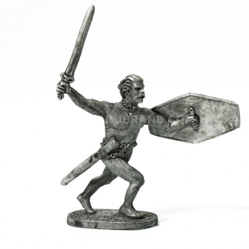 Celtic Warrior  Celtic Warrior is a miniature for wargame collections.