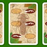 Bug Race board game - An example of cards from the Bug Race boardgame made by Rightgames