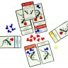 Set of shaped tokens for Evolution board game  - Game process with the set of shaped tokens